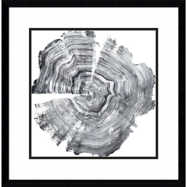 Modern & Contemporary Framed Tree Ring Art | AllModern