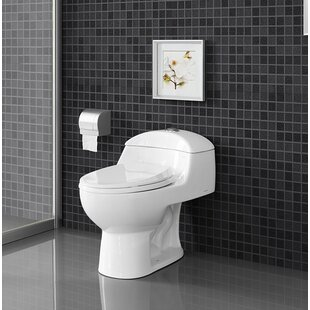Chateau® Dual Flush Elongated One-Piece Toilet (Seat Included)