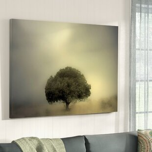 Room to Grow Photographic Print on Canvas By Alcott Hill