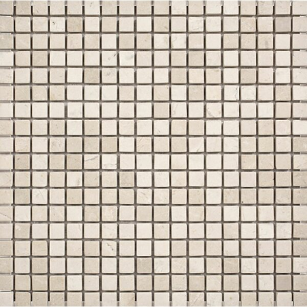 Crema Marfil Tumbled 0.625 x 0.625 Stone Mosaic Tile by Parvatile