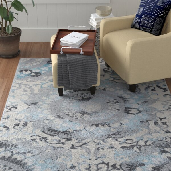 Marian Abstract Medallion Teal/Gray Area Rug by Winston Porter