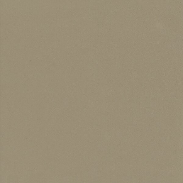 Element 24 x 24 Porcelain Field Tile in Latte Matte by Walkon Tile
