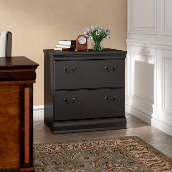 Vittoria 2-Drawer Lateral Filing Cabinet by Astoria Grand
