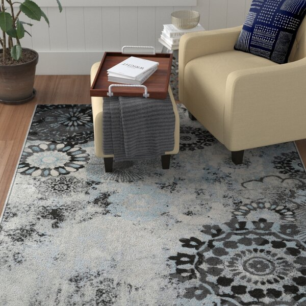Holmstrom Distressed Floral Pale Gray/Black Area Rug by Winston Porter