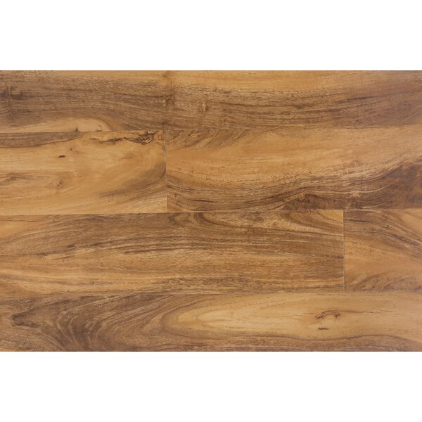 Impact 6 x 48 x 12mm Walnut Laminate Flooring in Tazmanian by Dyno Exchange