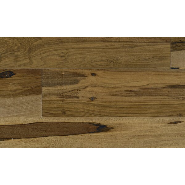3-1/4 Engineered Pecan Hardwood Flooring in Brown by IndusParquet