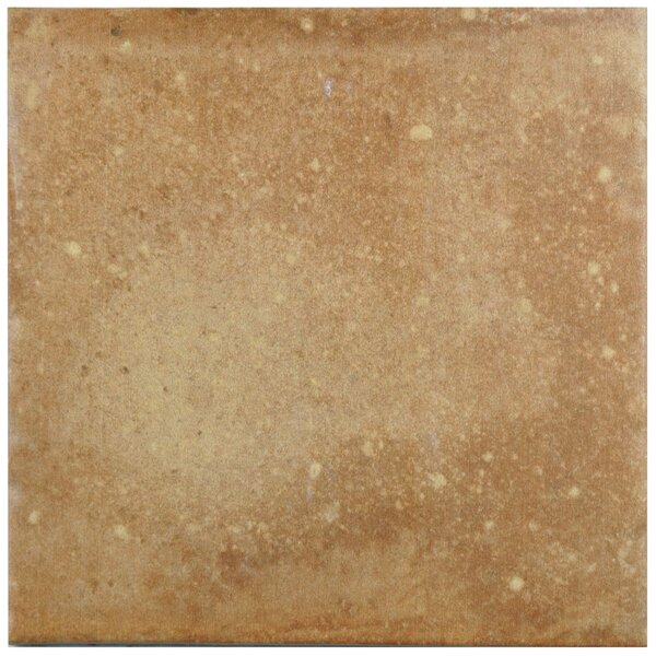 Lincoln 8.75 x 8.75 Porcelain Field Tile in Light Tawny by EliteTile