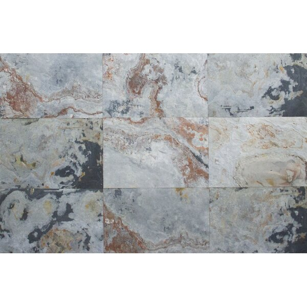 Thin Flexible 16 x 24 Natural Stone Field Tile in Autumn Pearl by Stone Design