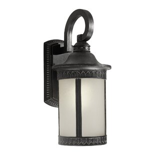 Guide to buy One Light Outdoor Lantern with Umber Seeded Shade By Forte Lighting