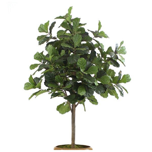 Fiddle Leaf Fig Tree in Basket by Distinctive Designs