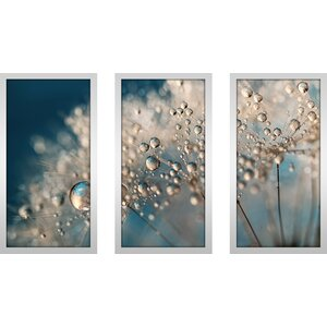 Denim Dandy Dazzle by Sharon Johnstone 3 Piece Framed Photographic Print Set by Picture Perfect International