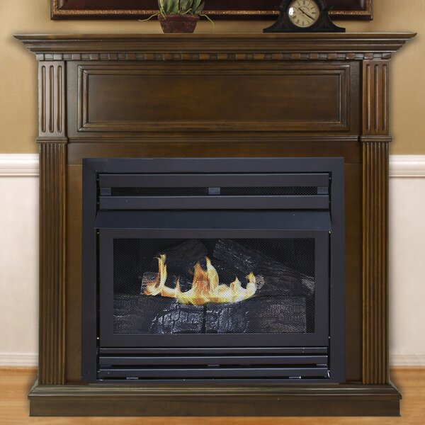 Shawnda Vent Free Fireplace By Darby Home Co