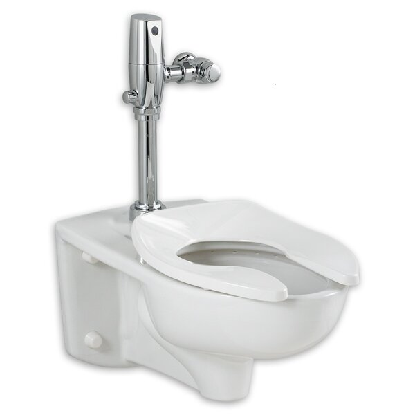 Afwall EverClean Dual Flush Elongated One-Piece Toilet by American Standard