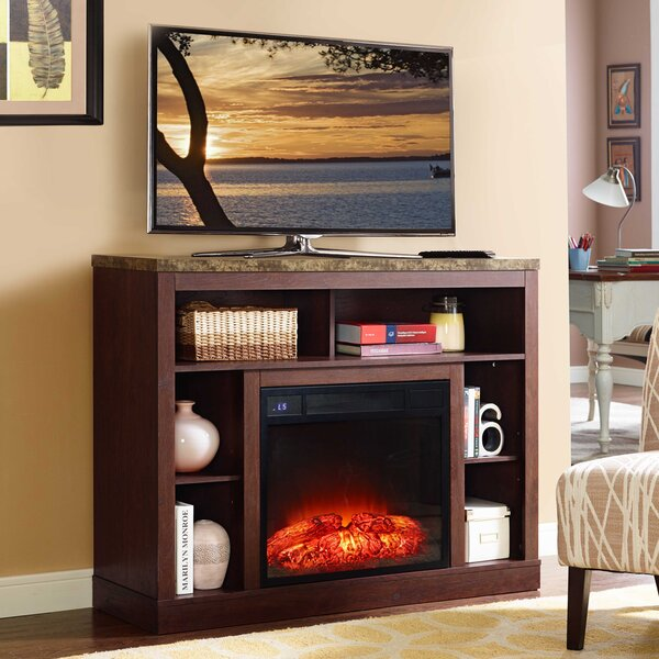 Desiree 46 TV Stand with Fireplace by Latitude Run