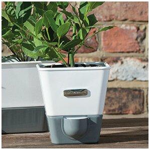 Indoor Herb Garden Self Watering Carbon Steel Pot Planter