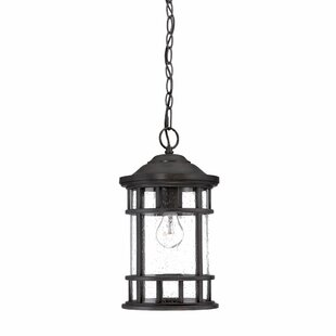 Top Reviews Ferryhill 1-Light Outdoor Hanging Lantern By Darby Home Co