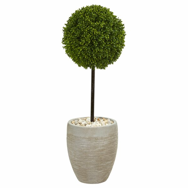Ball Artificial Floor Boxwood Topiary in Planter by Bloomsbury Market