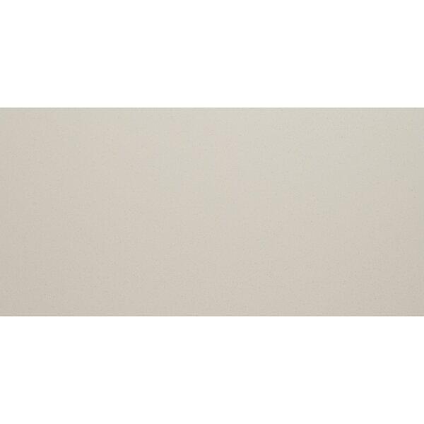 Aledo 12 x 24 Porcelain Field Tile in Stark White by Itona Tile
