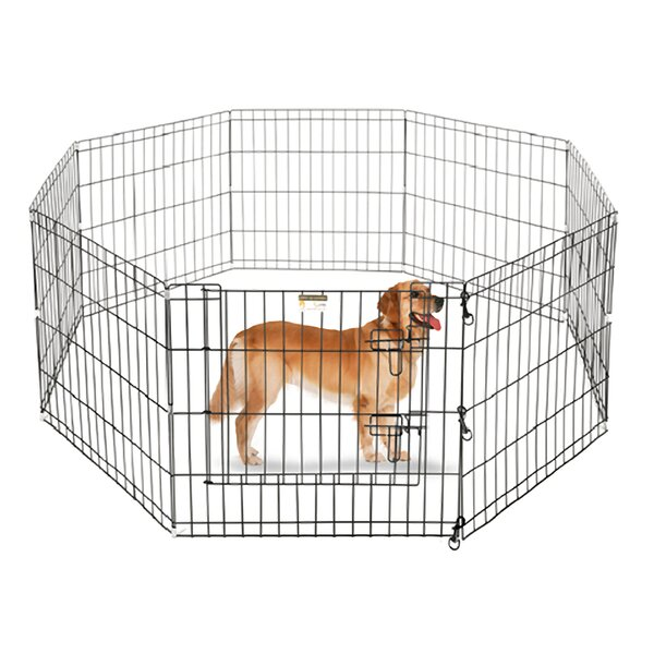 Atticus Exercise Dog Pen by Tucker Murphy Pet