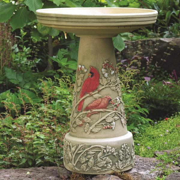 Burley Clay Summer Cardinal Birdbath by Birds Choi