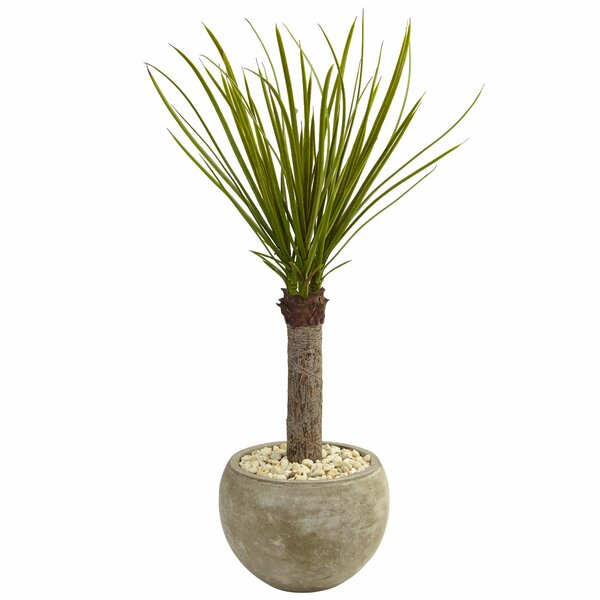 Artificial Yucca Floor Foliage Tree In Planters by Brayden Studio