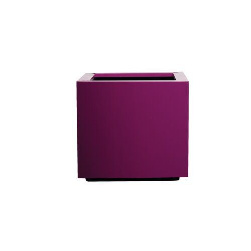 Metal Self-Watering Planter Box Symple Stuff Colour: Aubergi