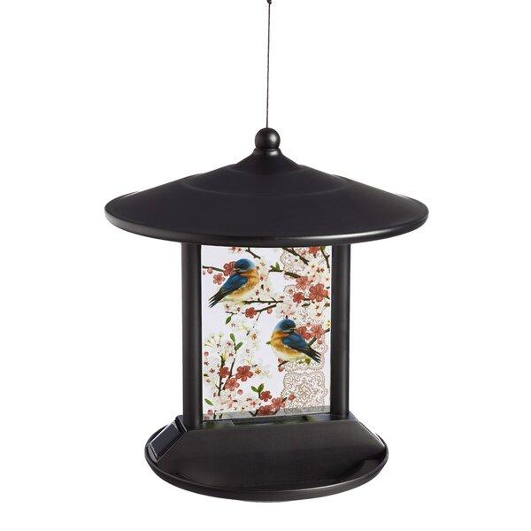 Bluebird Solar Tray Bird Feeder by Evergreen Flag & Garden