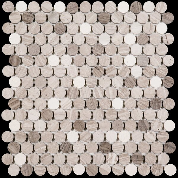 Penny Round Honed 0.75 x 0.75 Marble Mosaic Tile in Wooden White/Athens Gray by Ephesus Stones