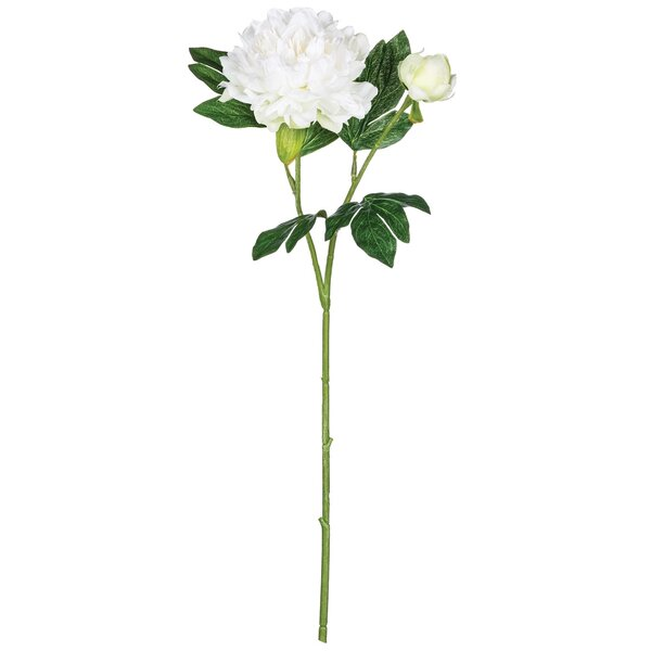 Peony Flower Stem (Set of 4) by Gracie Oaks