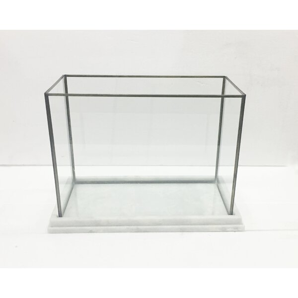 Glass/Iron Display Box by BIDKhome