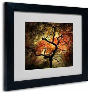 'Japanese' by Philippe Sainte-Laudy Framed Photographic Print by Trademark Fine Art
