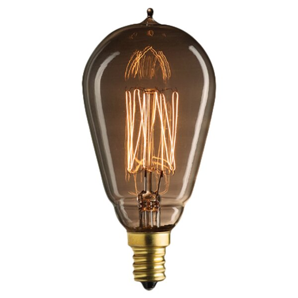 Nostalgic Edison 25W Incandescent Light Bulb (Set of 5) by Bulbrite Industries