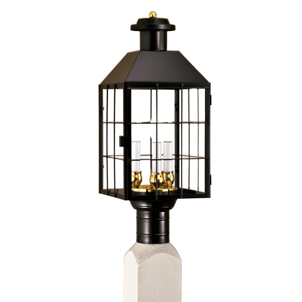 Hailie Outdoor 3-Light Lantern Head by Breakwater Bay