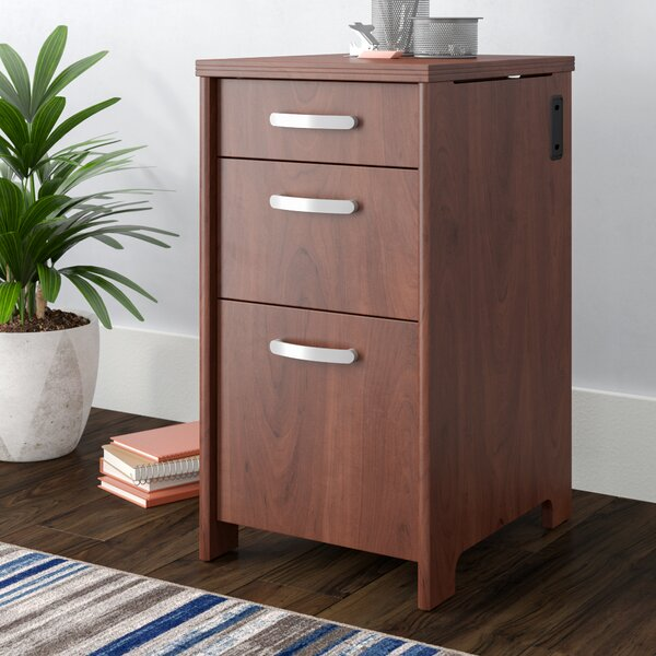 Envoy 3-Drawer Vertical Filing Cabinet by Latitude Run