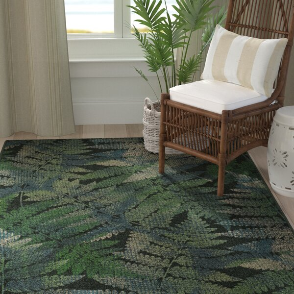 Wakefield Ferns Leaf Green Area Rug by Bay Isle Home