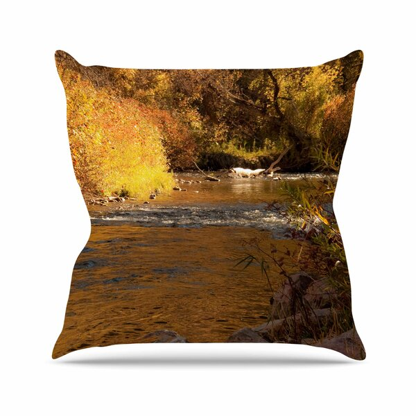 Sylvia Coomes Autumn Stream Outdoor Throw Pillow by East Urban Home