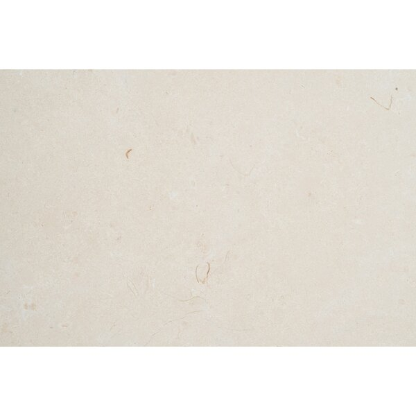 Biancone Polished 12x12 Marble Field Tile
