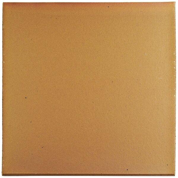 Shale 12.75 x 12.75 Ceramic Field Tile in Brown by EliteTile