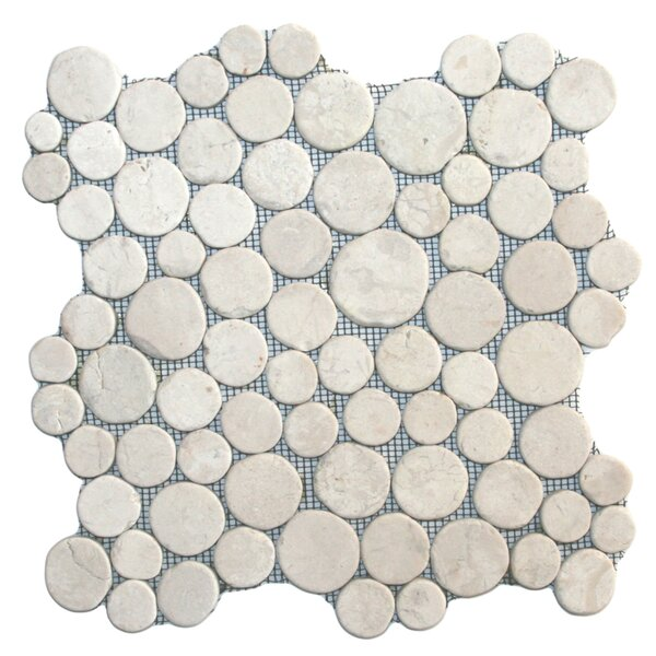 Muna Random Sized Natural Stone Mosaic Tile in White by CNK Tile