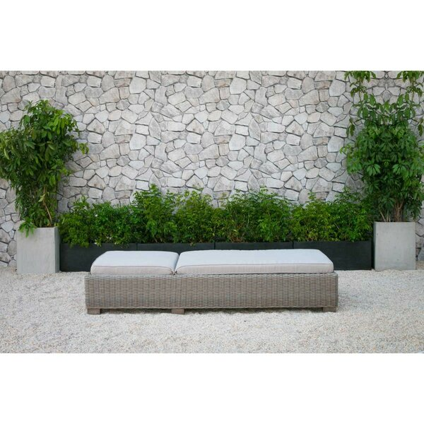 Clearbrook Wicker Sunbed Reclining Chaise Lounge with Cushion by Brayden Studio