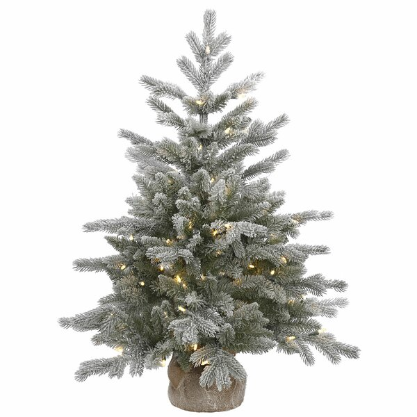 36 Frosted Pine Artificial Christmas Tree with 100 Clear/White Lights with Stand by The Holiday Aisle