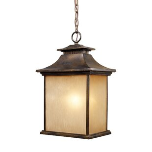 Comparison Lynwood 1-Light Outdoor Hanging Lantern By Loon Peak