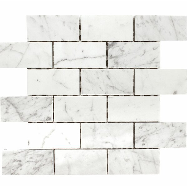 Carrara Brick 2 x 4 Stone Mosaic Tile in White Honed by Parvatile