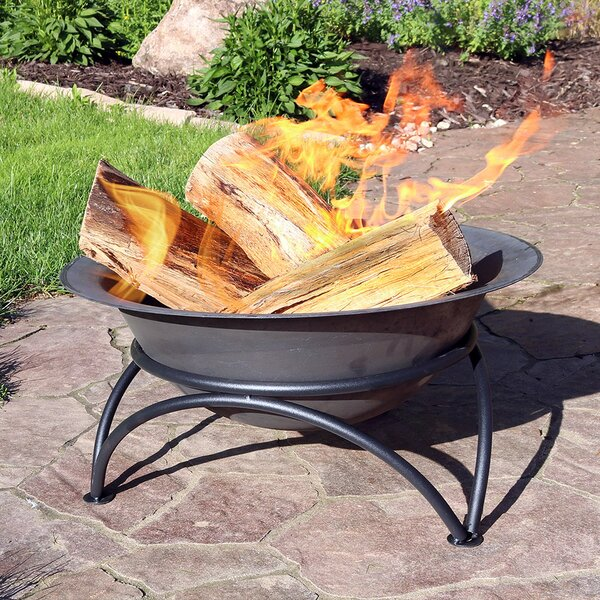 Merlene Wood-Burning Cast Iron Fire Pit by Charlton Home