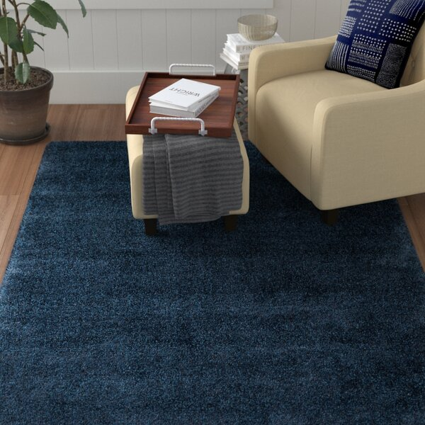 Trey Hand Woven Rug by Red Barrel Studio