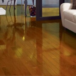 High Gloss 3-1/4 Solid Oak Hardwood Flooring in Butterscotch by Somerset Floors