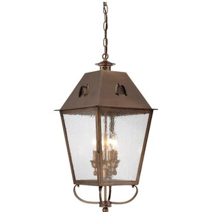 Affordable Price Meriline 4-Light Outdoor Hanging Lantern By Darby Home Co