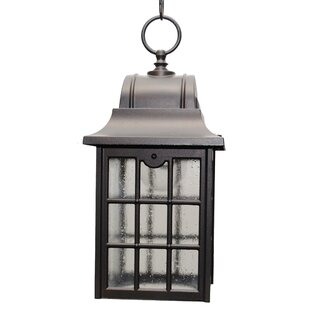 Best Choices Archard 1-Light Outdoor Hanging Lantern By Darby Home Co