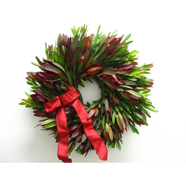 18 Safarri Sunset Wreath by From the Garden