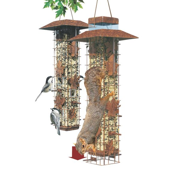 Be Gone Wild Caged Tube Bird Feeder by Woodstream